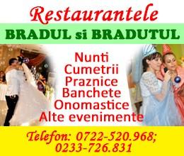 Restaurantele Bradul si Bradutul