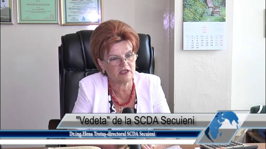 Vedeta de la SCDA Secuieni
