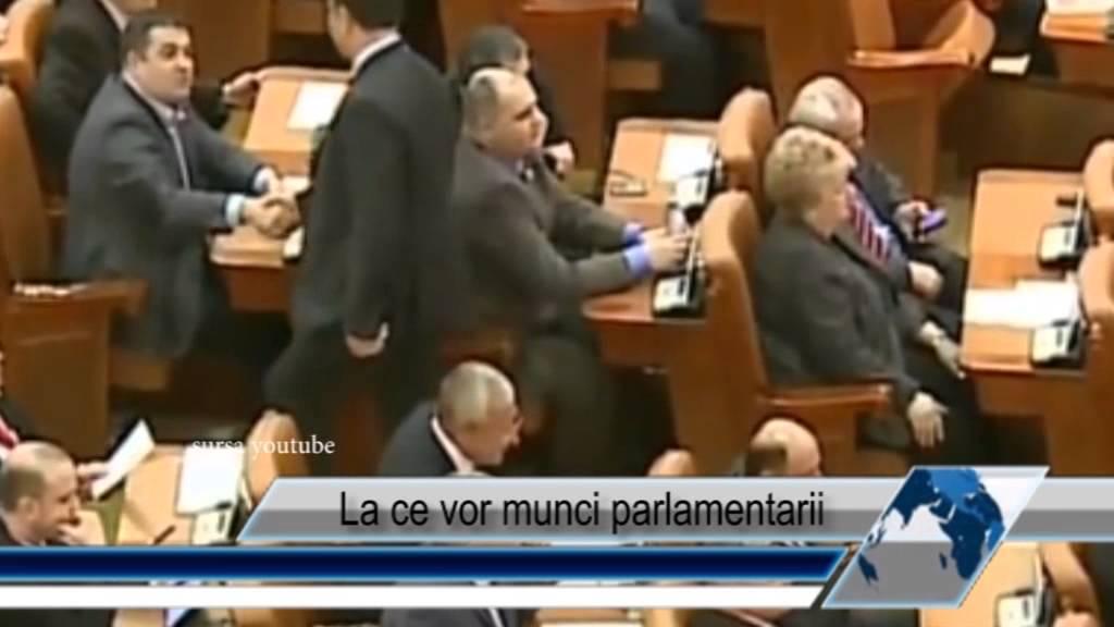 La ce vor munci parlamentarii