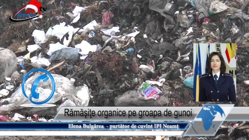 Rămăşiţe organice pe groapa de gunoi