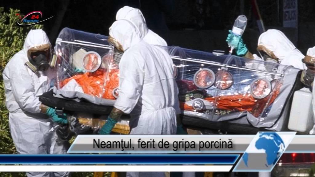 Neamţul, ferit de gripa porcină
