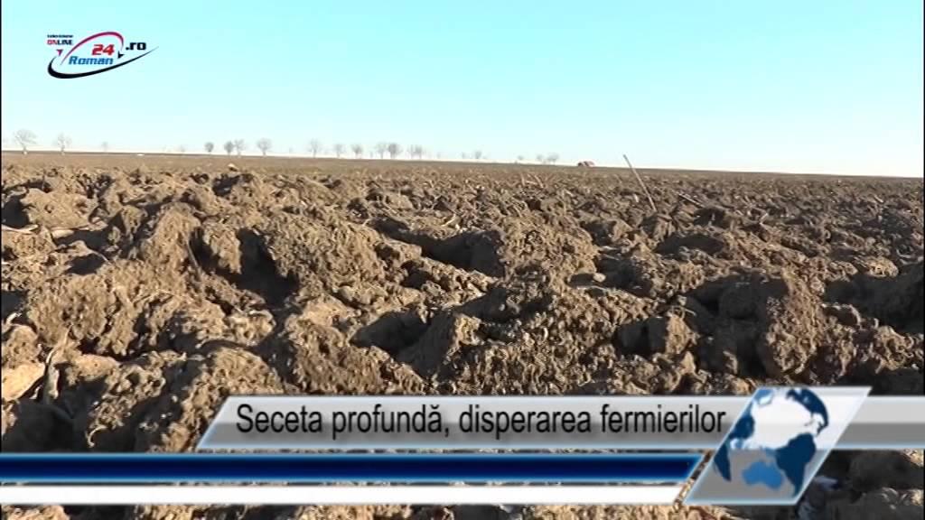 Seceta profundă disperarea fermierilor