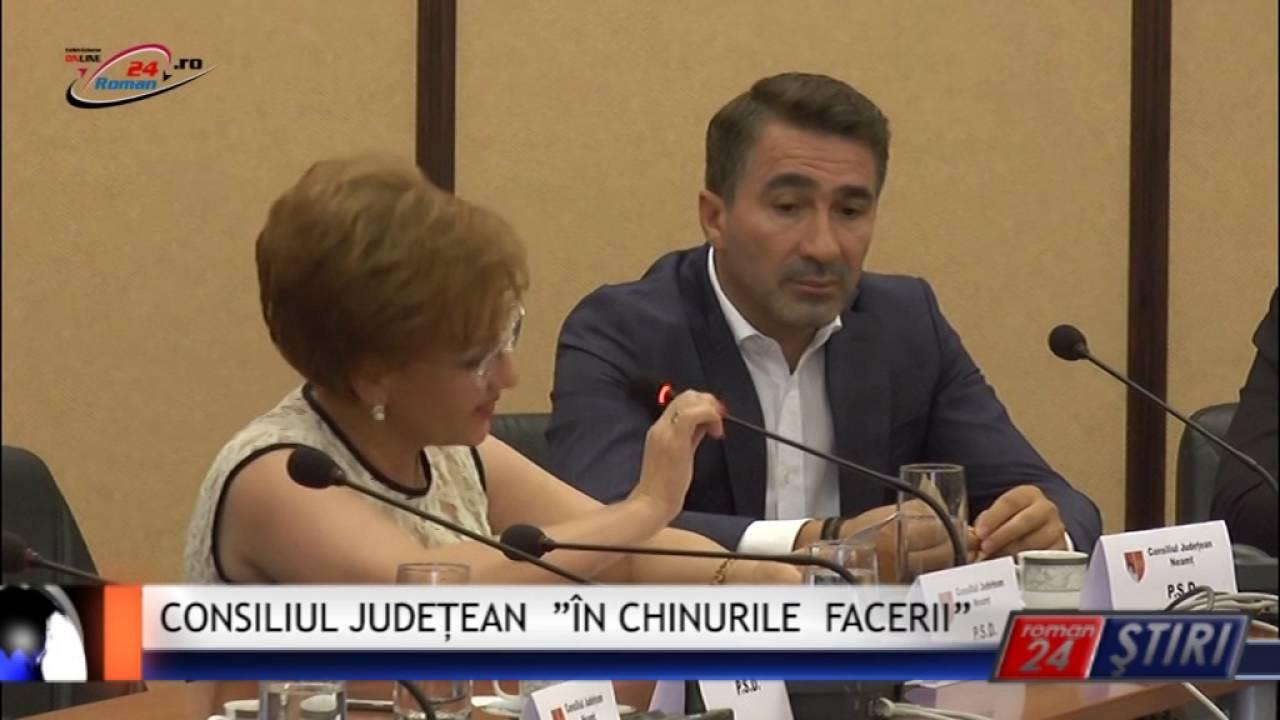 """CONSILIUL JUDEȚEAN """"ÎN CHINURILE FACERII"""""""