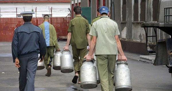 Ministerul Justitiei va facilita angajarea detinutilor, in agricultura sau de catre persoane juridice