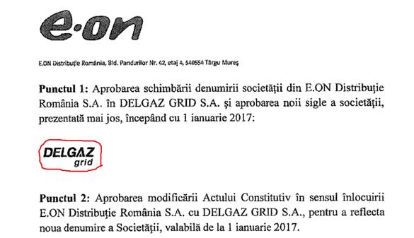 E.ON Distribuţie România îşi va schimba denumirea în Delgaz Grid