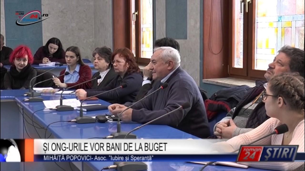 ȘI ONG-URILE VOR BANI DE LA BUGET