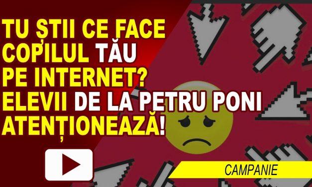 PERICOLELE DE PE INTERNET