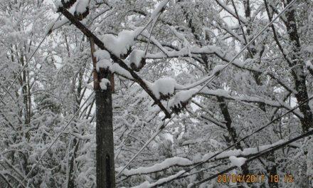 Avarii în sistemul de distribuţie a energiei electrice din Moldova din cauza fenomenelor meteorologice