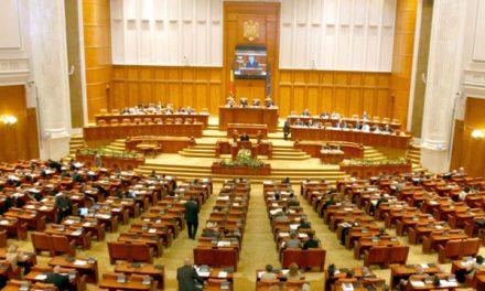 S-AU REDUS PEDEPSELE PENTRU VIOLENȚĂ ÎMPOTRIVA ANIMALELOR