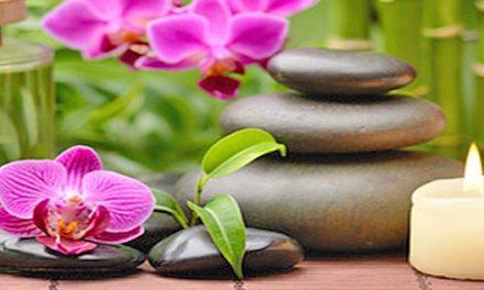 Întoarcerea la medicina holistică