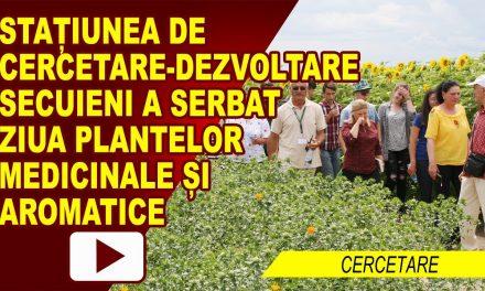 SCDA SECUIENI – SARBATOAREA PLANTELOR MEDICINALE SI AROMATICE