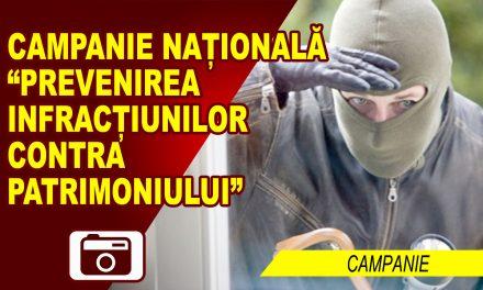 """CAMPANIA DE INFORMARE """"HOȚII SUNT CREATIVI"""""""