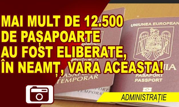 PESTE 12.500 DE NEMȚENI AU TRECUT PE LA SERVICIUL PAȘAPOARTE, VARA ACEASTA