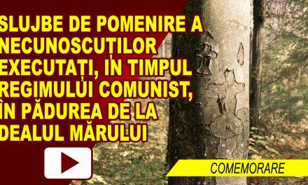 ASOCIATIA FOSTILOR DETINUTI POLITICI A COMEMORAT VICTIMILE DIN DEALUL MARULUI – video