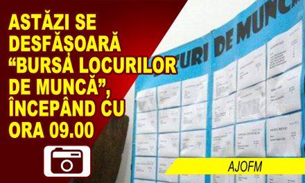 BURSA LOCURILOR DE MUNCĂ PENTRU ABSOLVENȚI