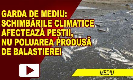 PEȘTII, AMENINȚAȚI DE CLIMĂ, NU DE POLUARE…