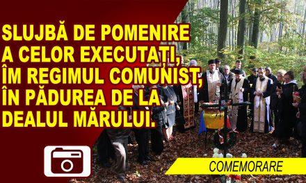 SLUJBĂ DE POMENIRE A NECUNOSCUȚILOR EXECUTAȚI, IN TIMPUL REGIMULUI COMUNIST, ÎN PĂDUREA DE LA DEALUL MĂRULUI – galerie foto