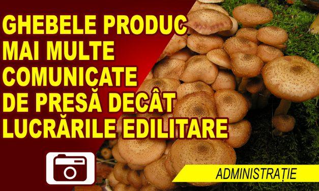 GHEBELE CARE PRODUC COMUNICATE DE PRESA