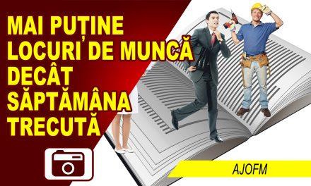 SITUAȚIA LOCURILOR DE MUNCĂ