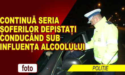 ȘOFERILOR NEMȚENI LE PLACE ALCOOLUL