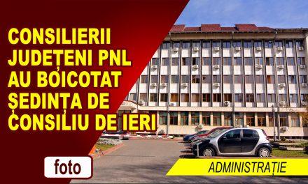 Peneliștii din Consiliul Județean au boicotat ședința de ieri