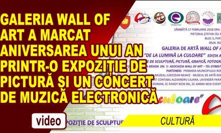 De la Lumina La Culoare – Editia a II-a – Galeria Wall of Art