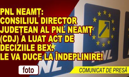 Pentru PNL Neamț singurul adversar politic este și trebuie să fie doar PSD!