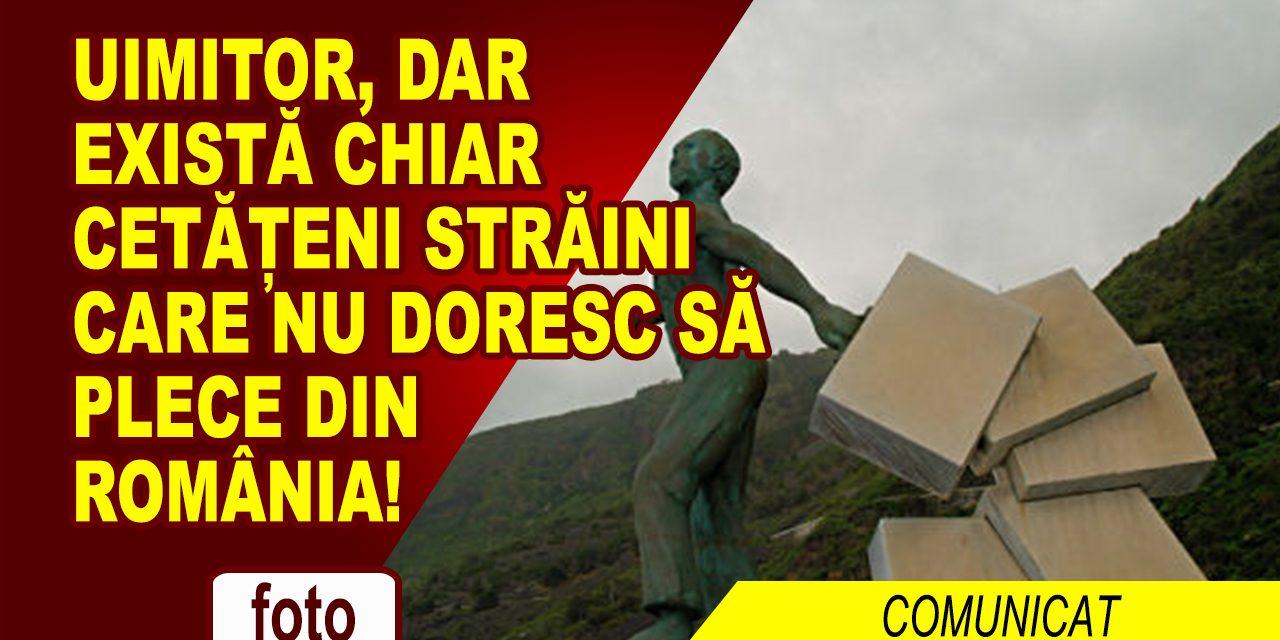 EXISTĂ ȘI CETĂȚENI STRĂINI CARE NU VOR SĂ PĂRĂSEASCĂ ROMÂNIA!