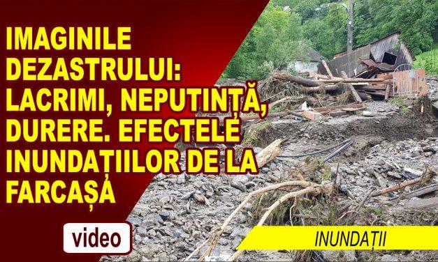 Imaginea Dezastrului de la Farcașa Neamț