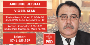 Cabinet Deputat Viorel Stan