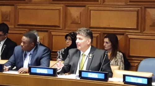 Deputat Laurențiu Leoreanu : Am participat la Reuniunea Parlamentară organizată de UIP, Misiunea Parlamentară a Canadei la ONU, Biroul ONU pentru Dezarmare