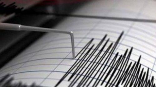 Cutremur cu magnitudinea de 3,1 în judeţul Vrancea. Seismul s-a produs la o adâncime de 77 kilometri